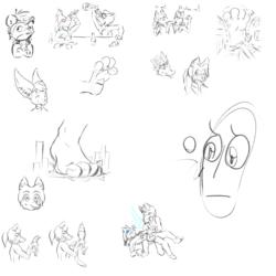 TFF Sketch Batch