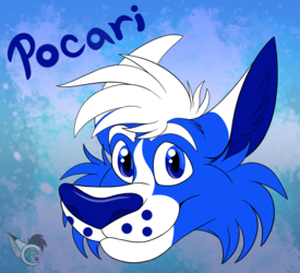 Pocari Roo - Fanart