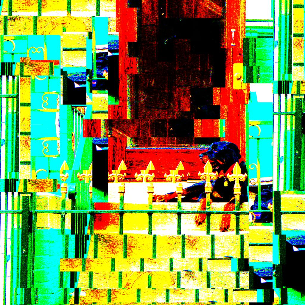 DTFN (Tripps the Dog Remix)