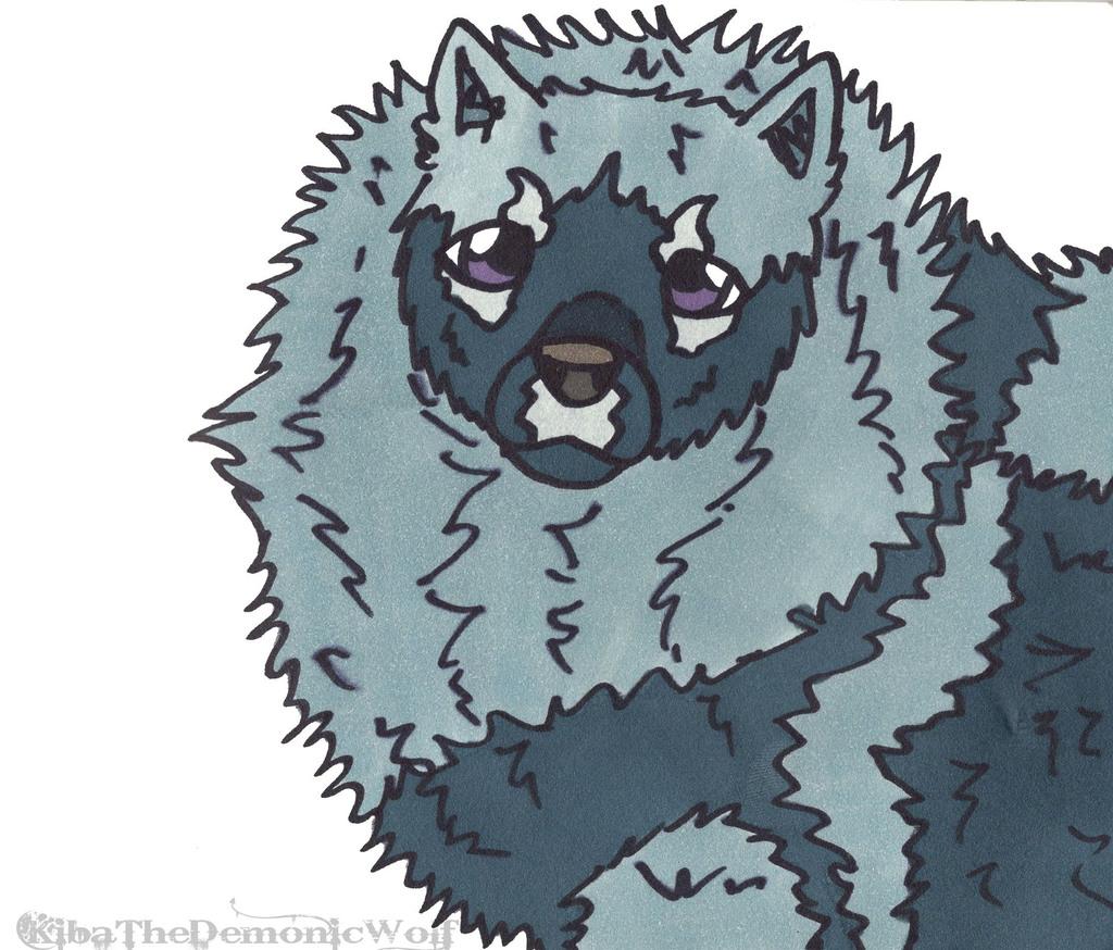 Bunch of Doggos - Keeshond