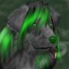 Avatar for Lashzara