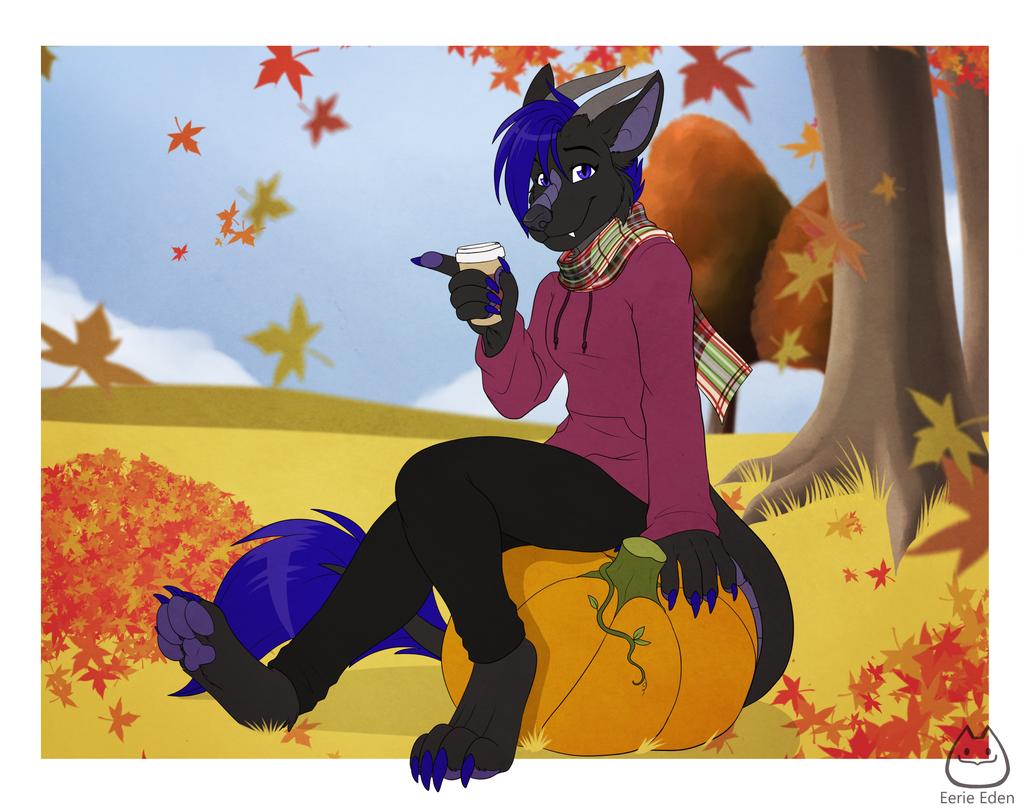 Pumpkins and Tea