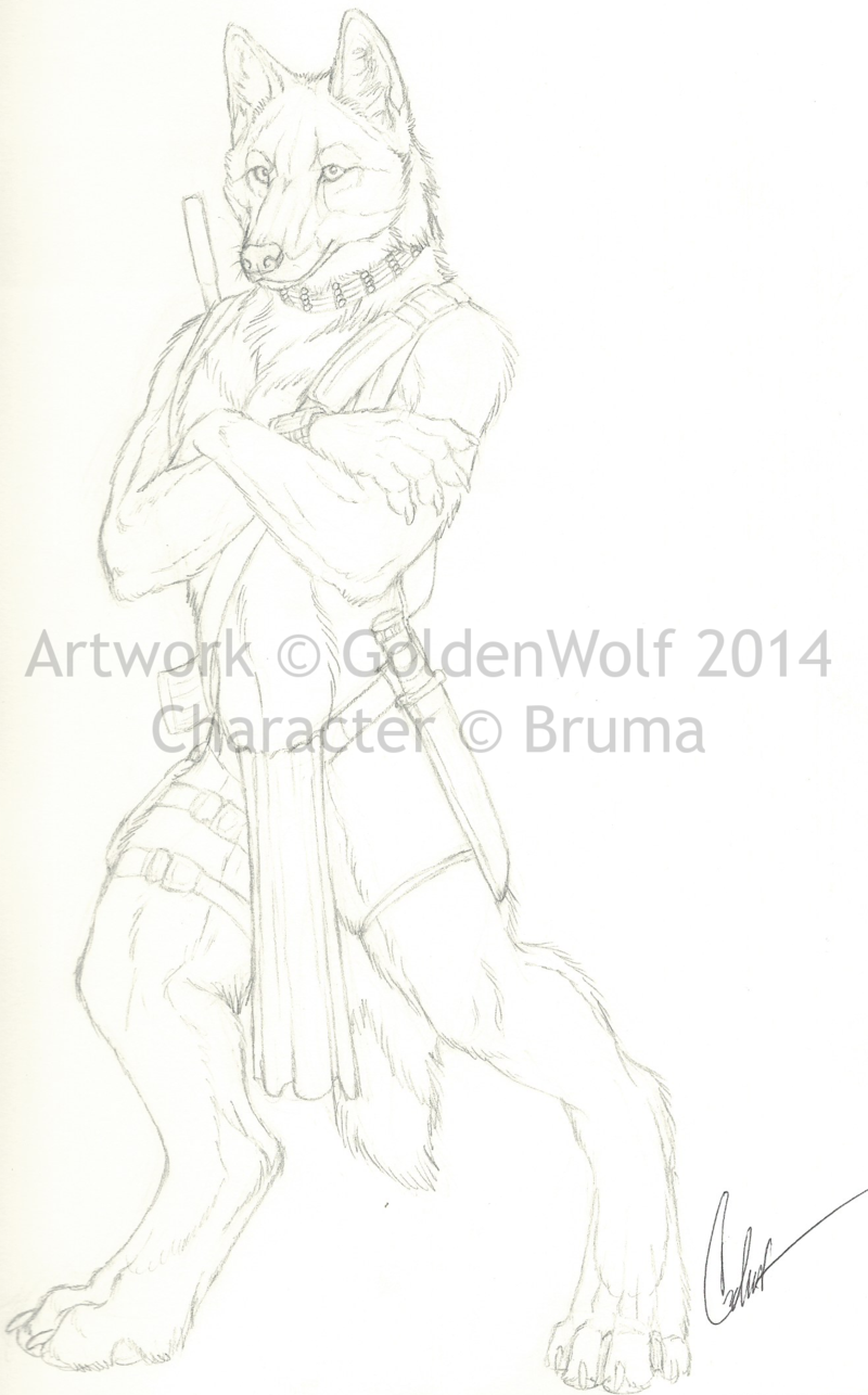 Bruma Sketchbook Sketch by GoldenWolf