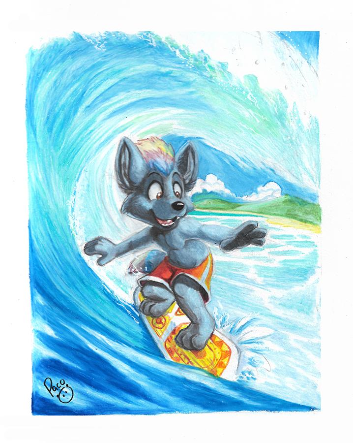 Hino surf