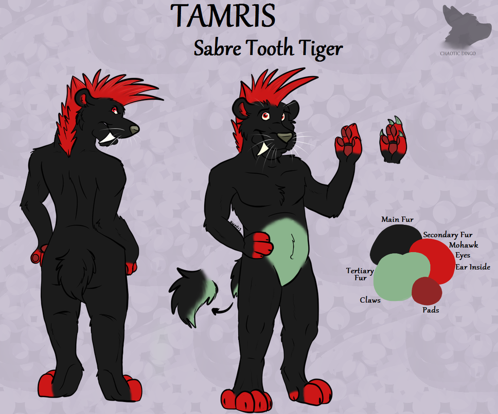 [Commission] - Zarroc89 - Tamris Reference Sheet
