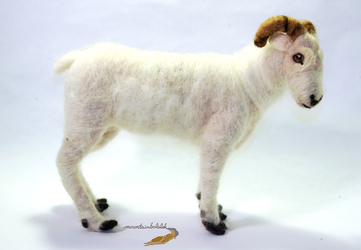 Needlefelted Dall's Sheep