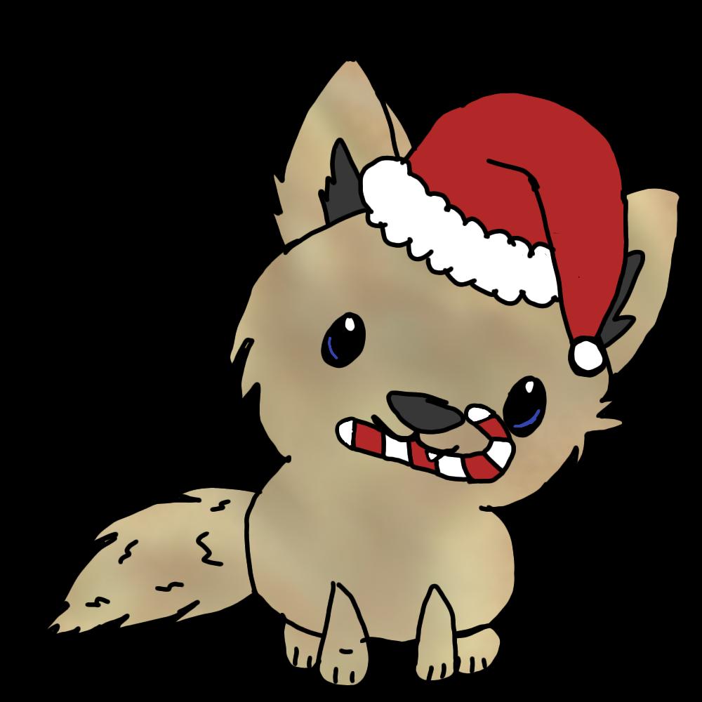 Most recent image: Panthera Christmas