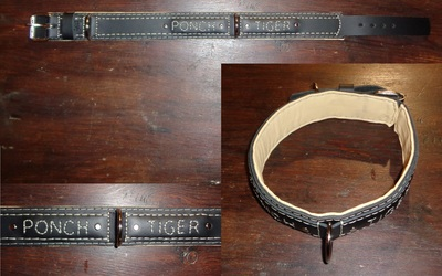 Collar for Ponch Tiger
