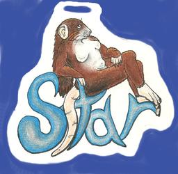 Slipping Star Full-Body Badge