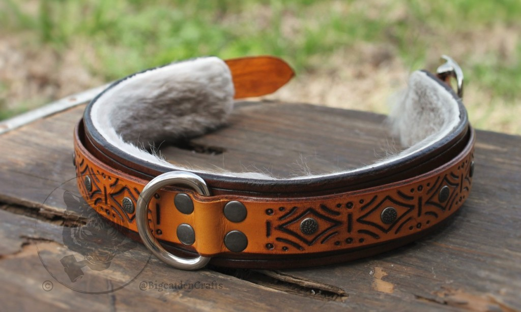Brown and Yellow Engraved, Studded Collar