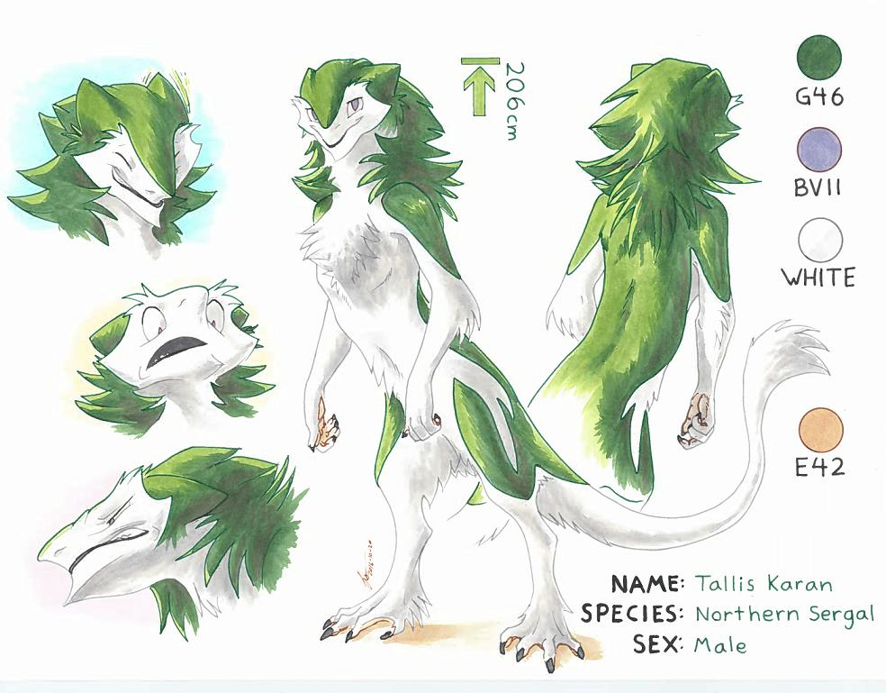 Tallis Karan - Full Ref Sheet