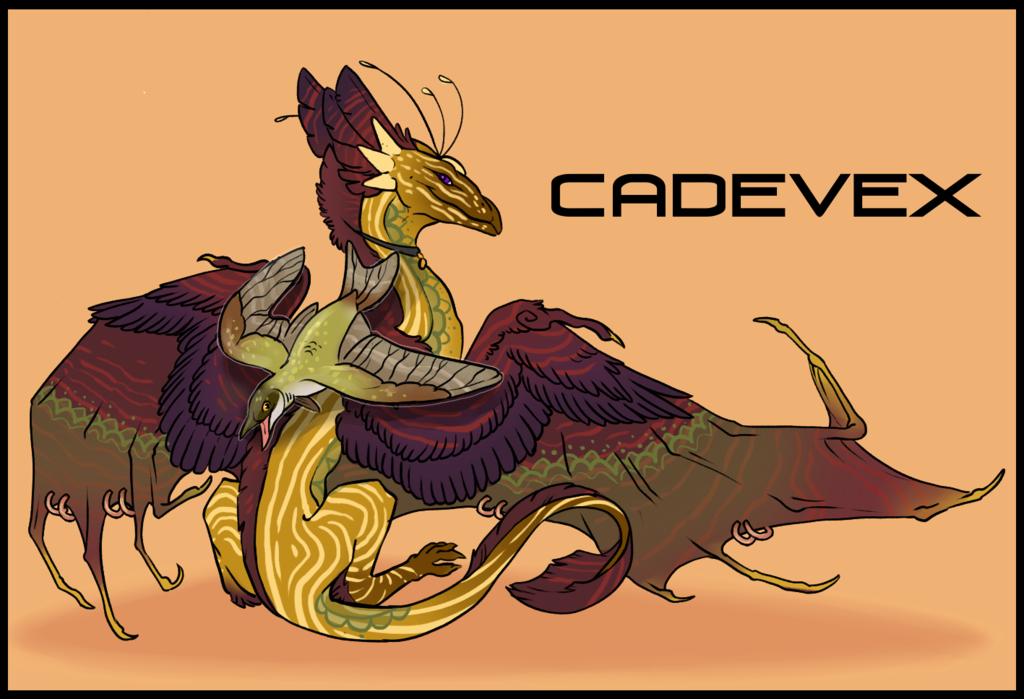 Most recent image: Cadevex