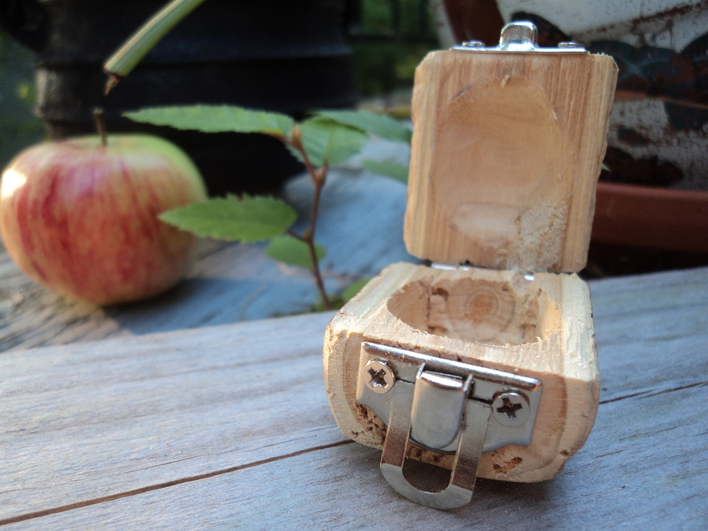 Most recent image: Tiny Wooden Log Box - Opened