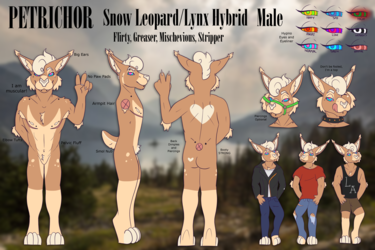 [P]Petrichor Reference Sheet