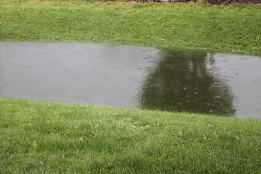 Rain water