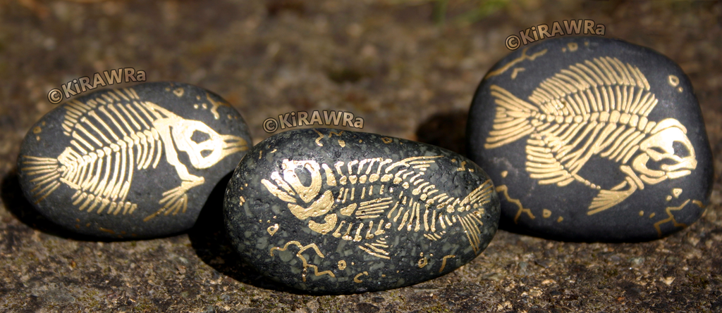 Most recent image: Painted Fossil Rock Magnets - Fish