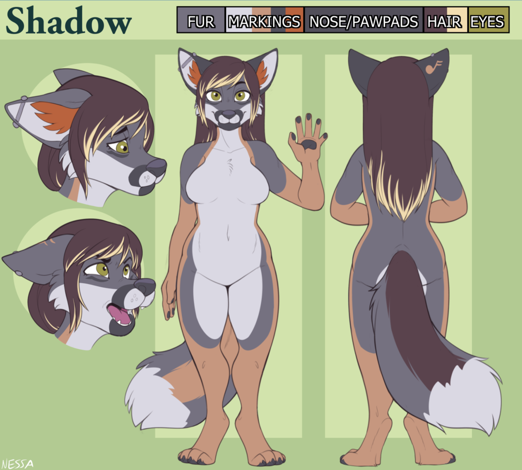 Shadow Reference Sheet - Commission