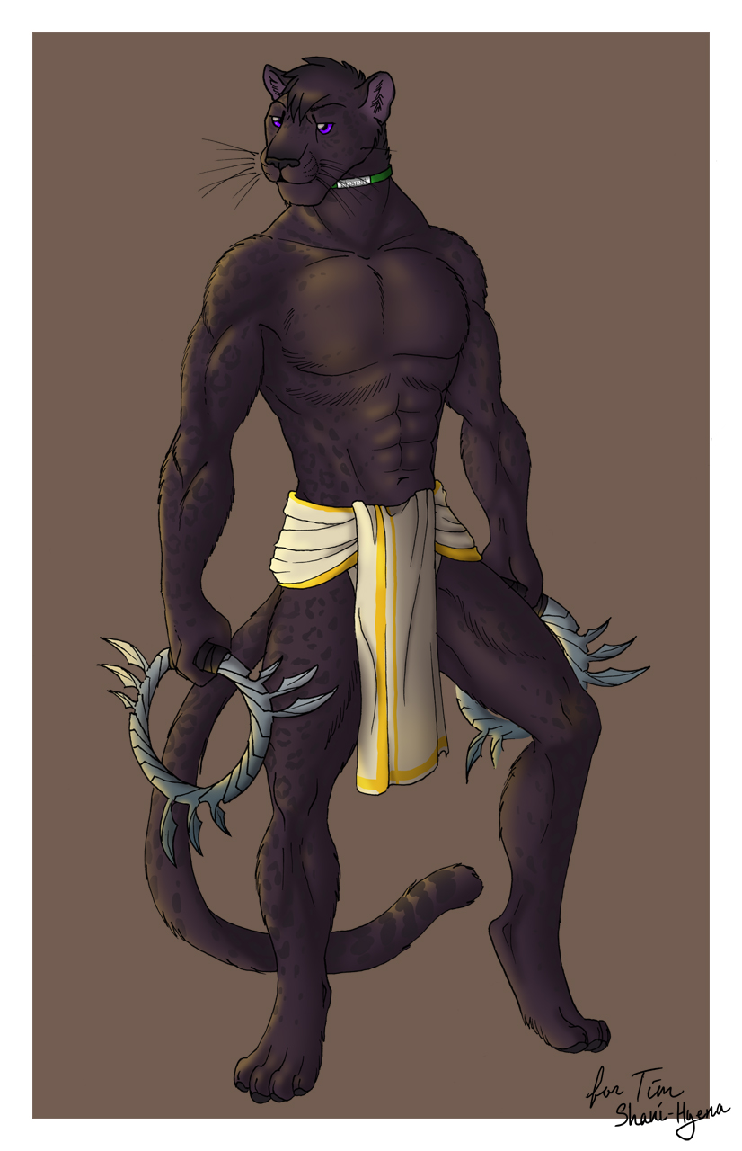 Bharat - Shadow Guardian