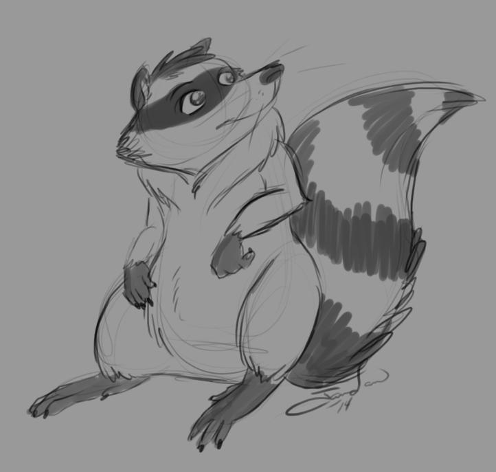 Raccoon sketcherdoodle