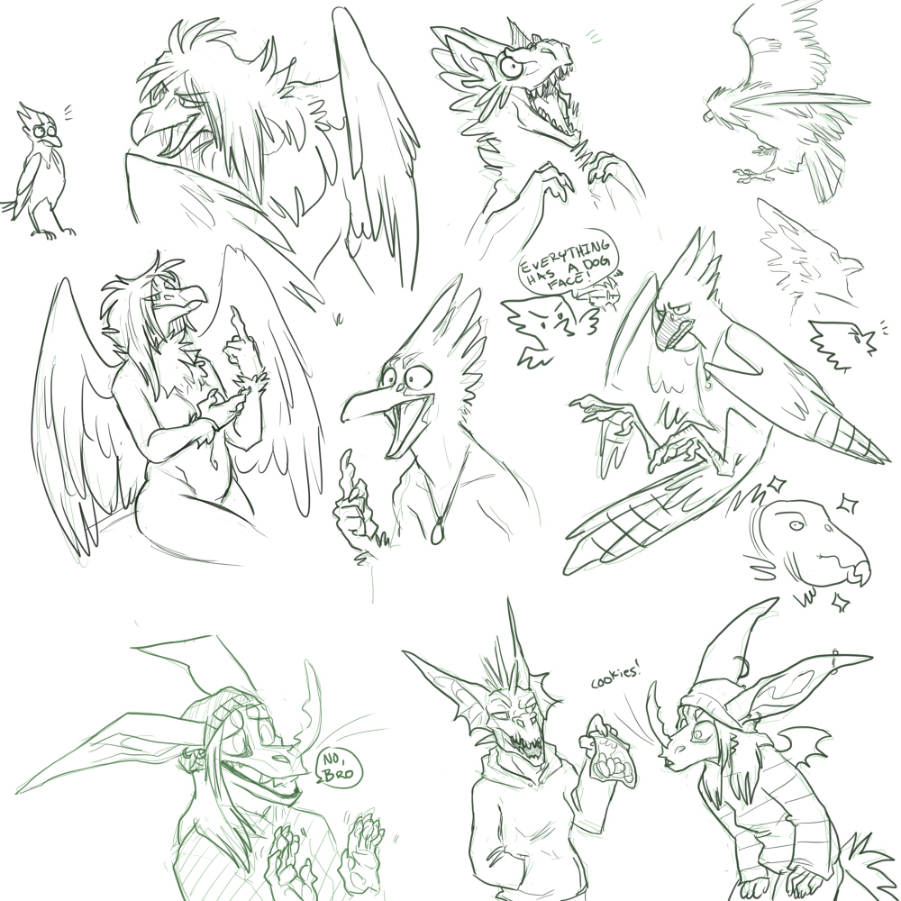 Boid Sketches
