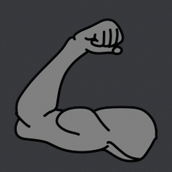 0249 - muscles