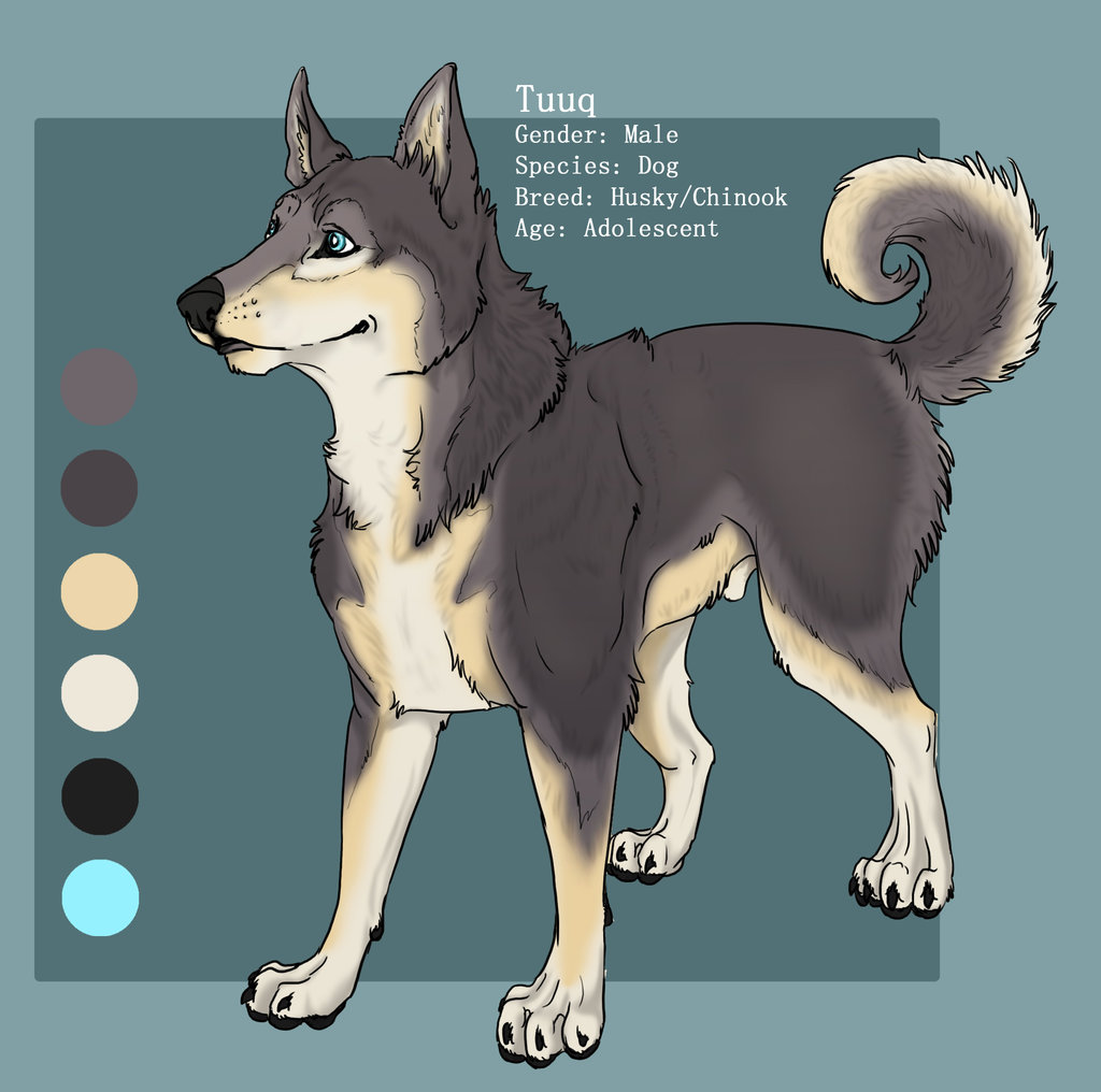 Most recent image: Tuuq basic reference