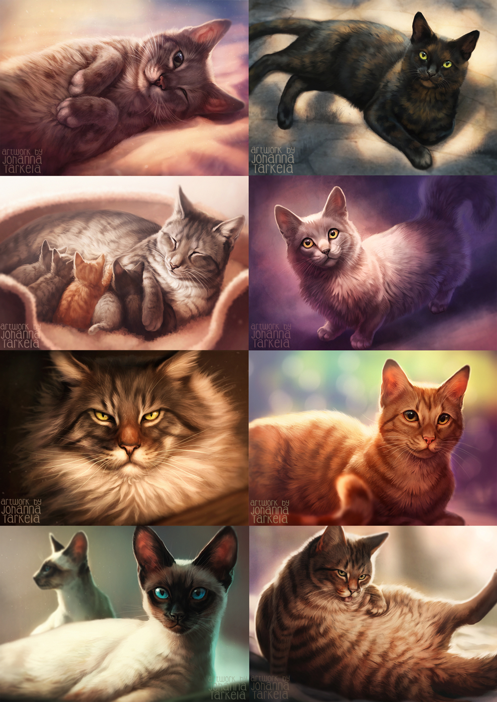 All the cats!