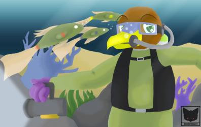 [RE] - Underwater Hawk