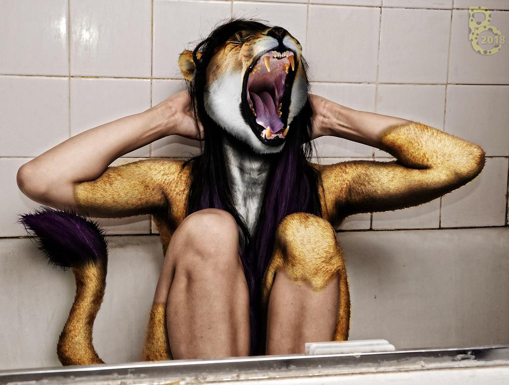 First Roar