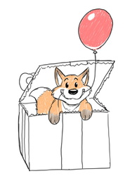 Birthday BeanFox