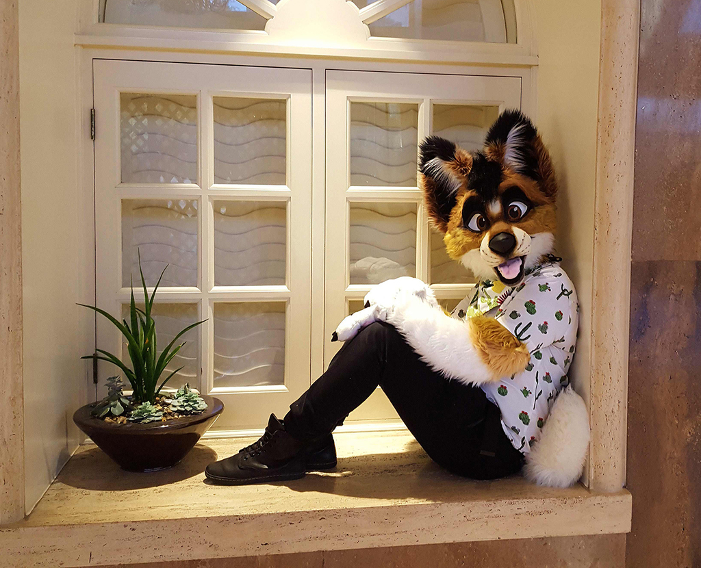 How Much is that Spaceyote in the Window?