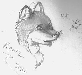 Realism test