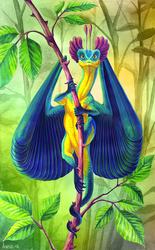 Hummingdragon