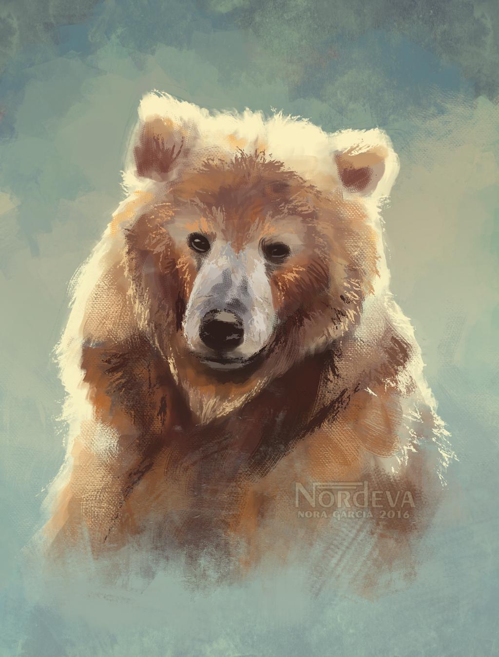 Bear portrait - quick study