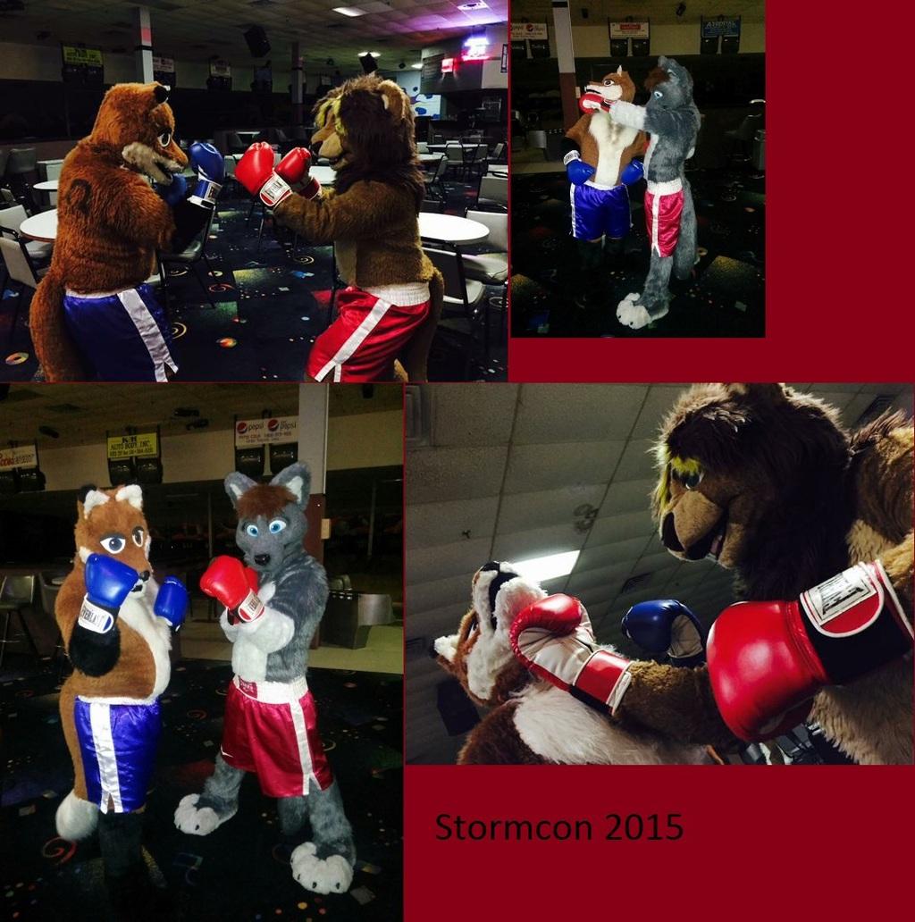 Boxing at Stormcon!
