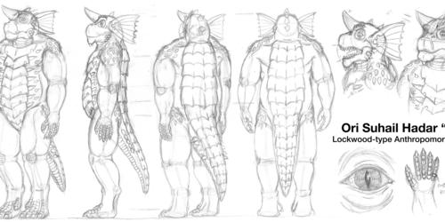 Ori Suhail Hadar 2014 Reference - Draft Sketches