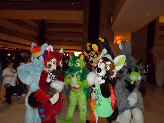 Pack of Suiters