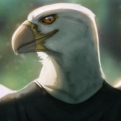 The Falcon sends his Regards