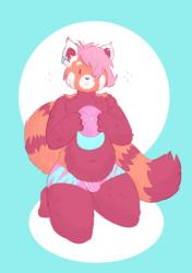 your red panda boyfriend (2)