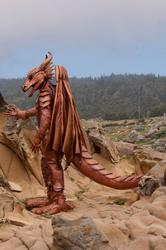 Full Body Latex Dragon Costume Series, installment 7