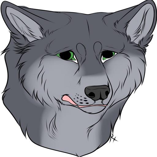 wolfdog 1