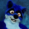 avatar of Rolf