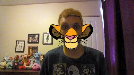 tiger to simba
