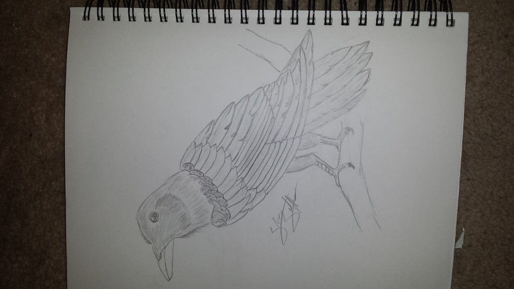 Hand drawn Raven