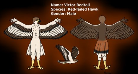 Victor Redtail Concept Art New Version