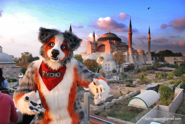 Fursuiting in Istanbul pt 2: The great mosque