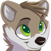 avatar of jovo