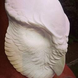 Blank Owl Mask