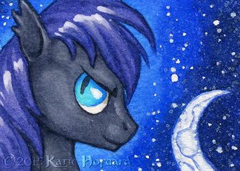 Night Pony