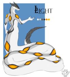 02- Light